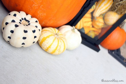 DIY painted pumpkins for the porch 4